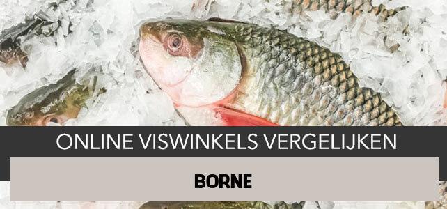 bestellen bij online visboer Borne