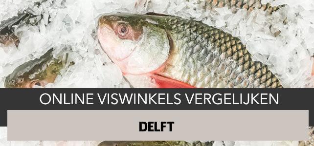 bestellen bij online visboer Delft