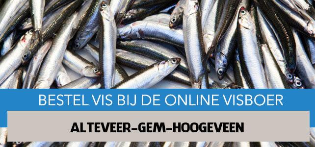 Vis bestellen en laten bezorgen in Alteveer gem Hoogeveen