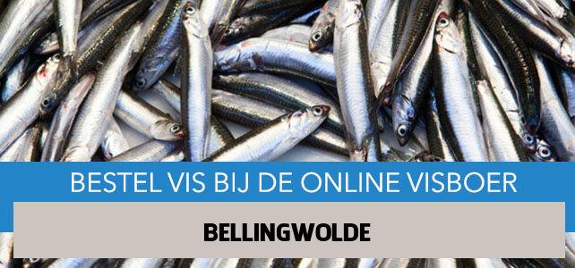 Vis bestellen en laten bezorgen in Bellingwolde