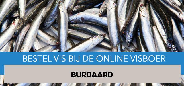 Vis bestellen en laten bezorgen in Burdaard