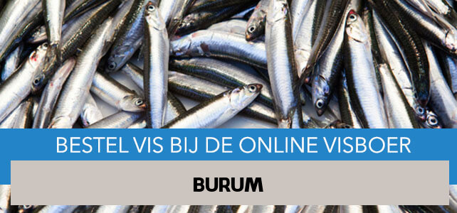 Vis bestellen en laten bezorgen in Burum