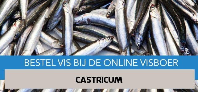 Vis bestellen en laten bezorgen in Castricum