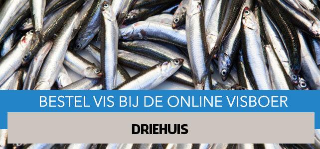 Vis bestellen en laten bezorgen in Driehuis