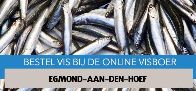 Vis bestellen en laten bezorgen in Egmond aan den Hoef