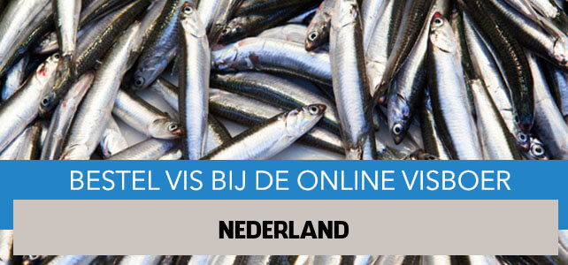 Vis bestellen en laten bezorgen in Nederland