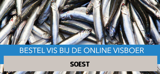 Vis bestellen en laten bezorgen in Soest