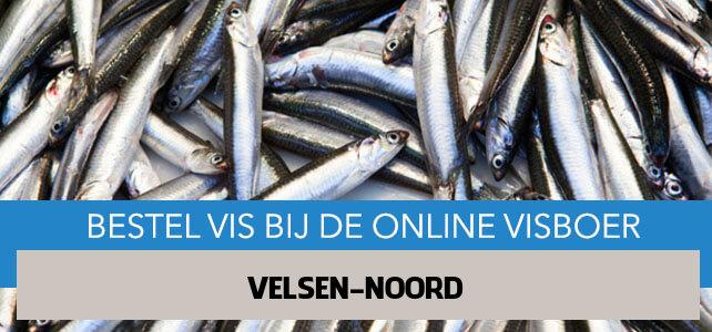 Vis bestellen en laten bezorgen in Velsen-Noord